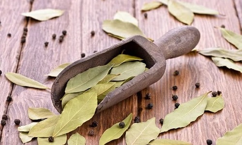 Лечение цистита лавровым листом приносит быстрые и стойкие результаты, избавляя от проблем, связанных с циститом
