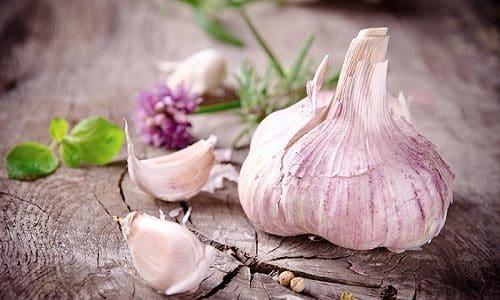 Употребление в пищу чеснока при цистите помогает облегчить состояние